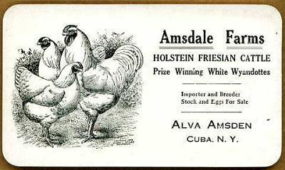 Cuba-Amsdale-Adv