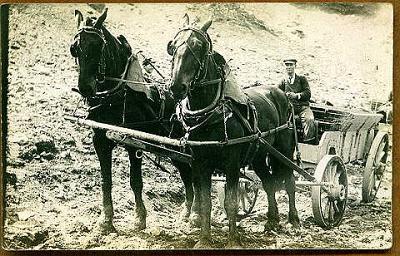Cuba-Horse-Wagon