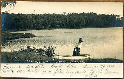 Moss-Lake-View